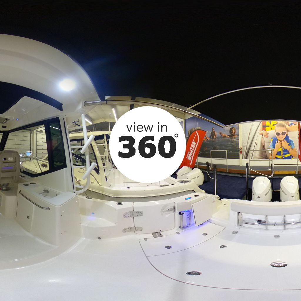 View Walkaround of this Boat